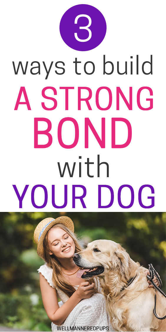Ways to bond with your dog