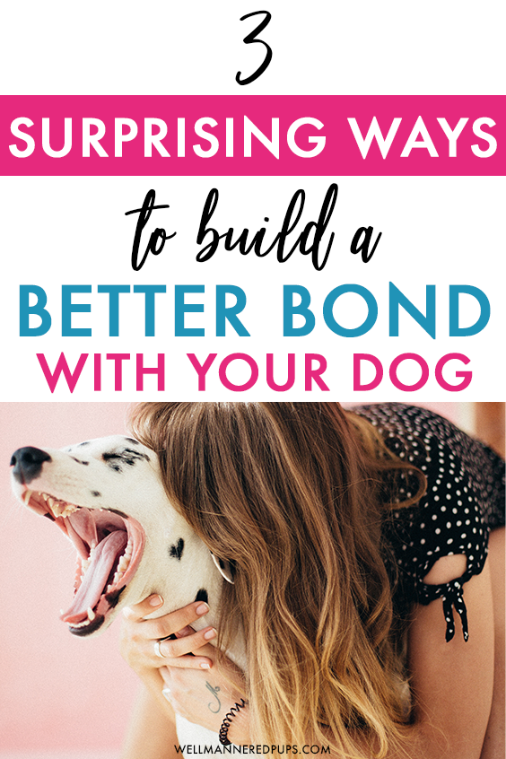 How to build a better bond with your dog