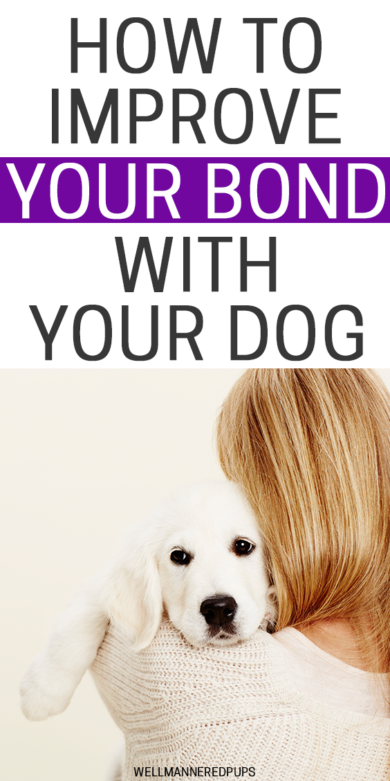 How to improve your bond with your dog