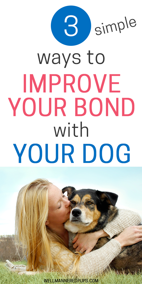 Ways to improve bond with your dog