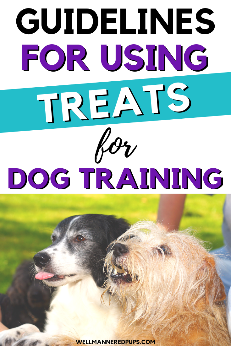 Guidelines for using treats for dog training