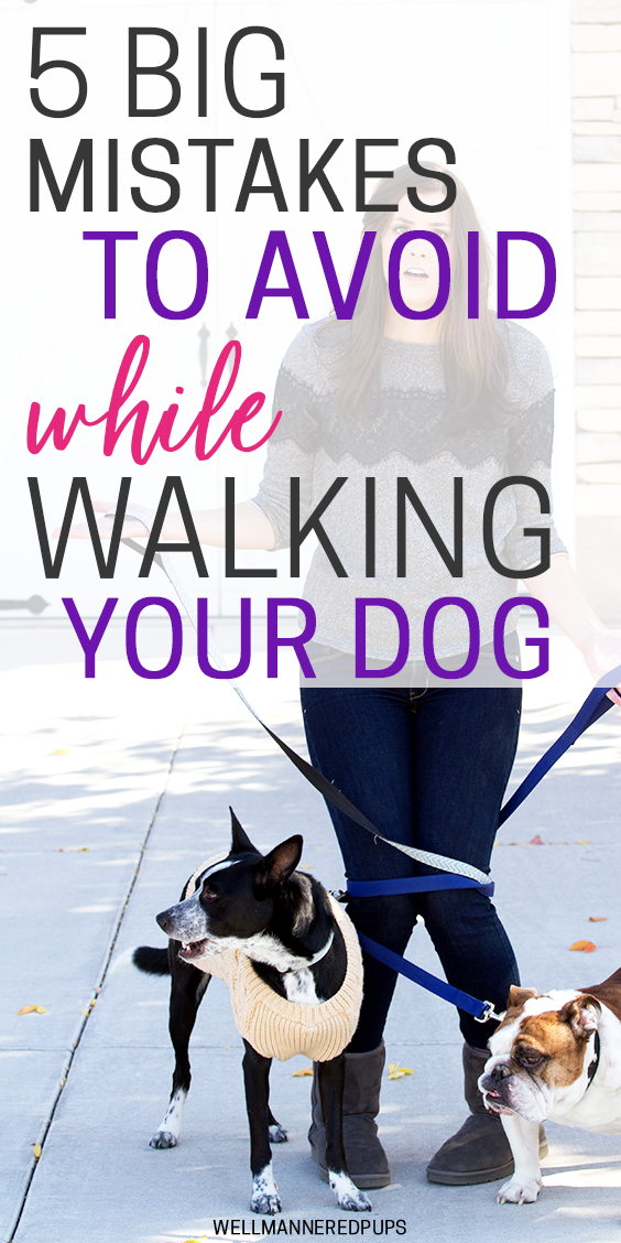 Mistakes to avoid while walking your dog